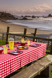 Sunset Picnic on Ocean Overlook Royalty Free Stock Photos