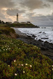 Sunset at Pigeon Point Light House Stock Image
