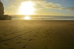 Sunset at piha beach in New Zealand. Beautiful orange color sunset at piha beach in New Zealand royalty free stock image