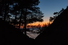 Sunset through the pine black forest in the mountains. Sunset through the pine forest stock photo