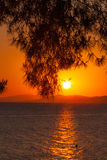 Sunset with Pinetree, Sithonia Stock Images