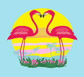 Sunset and pink flamingos Royalty Free Stock Image
