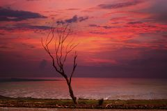 Sunset Pink Silhouette. Everyone at one time or another has marveled at the beautiful red, pink, mauve and orange colors of a sunrise or sunset. Although Stock Image