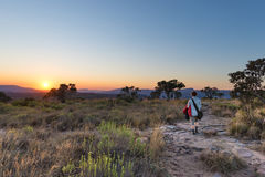 Sunset on the plateau at Blyde River Canyon, famous travel destination in South Africa. One person walking in the bush, rear view. Sunset on the plateau at Royalty Free Stock Images