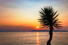 Sunset in Podgora, Dalmatia, Croatia Stock Photo