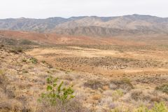 Sunset Point vista Royalty Free Stock Image