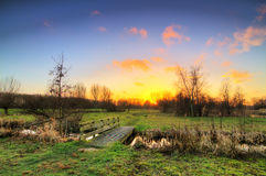 Sunset polder park Royalty Free Stock Image