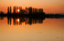 Sunset in pond Royalty Free Stock Images