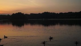Sunset on the pond of museum-estate Kuskovo, Moscow. stock video footage