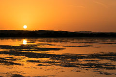 Sunset on the pond of pink flamingos in Chia, Sardinia. Royalty Free Stock Photos