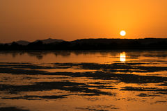 Sunset on the pond of pink flamingos in Chia, Sardinia. Stock Image