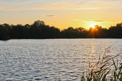 Sunset on pond with silhouette of trees, focused to sun, Czech l Royalty Free Stock Photo
