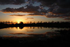Sunset at the the pond Royalty Free Stock Photo
