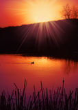 Sunset pond royalty free stock images