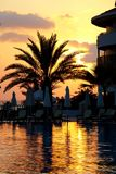 Sunset at poolside Stock Images