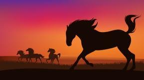 Sunset prairie Stock Photo
