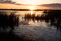 Sunset on a Prairie Swamp. A sunset on a swamp on the Canadian Prairies stock photo