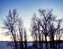 Sunset on the Prairies. Lone star and  sunset on the winter Canadian Prairies Stock Photos
