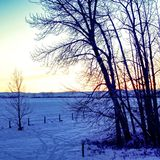 Sunset on the Prairies. Sunset on the winter Canadian Prairies Royalty Free Stock Photography