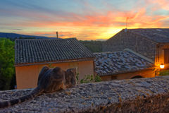 Sunset in Provence Stock Photography