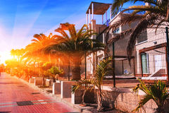 Sunset in Puerto de la Cruz, Tenerife. Royalty Free Stock Photo