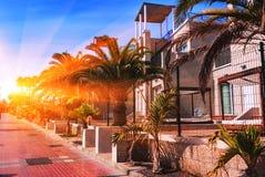 Sunset in Puerto de la Cruz, Tenerife. Royalty Free Stock Photo