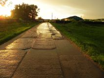 Sunset after rain on asphalt road. Details, close-up. The sun`s rays royalty free stock image