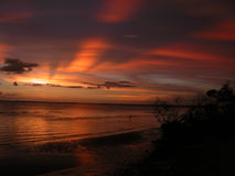 Sunset rays. A sunset over Charlotte Harbor Florida shows the distinctive rays caused by the shadows of other clouds. A wading bird can be seen in the water royalty free stock photo