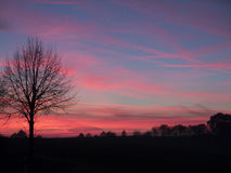 Sunset in red and blue. With silhouette of tree and landscape in foreground Stock Photography