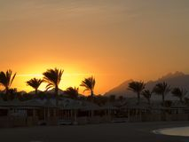 Sunset. On Red sea. Empty beach after hot day on Coral beach Stock Photography