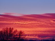 Sunset with red stratus clouds and blue sky. With flying white plane royalty free stock images