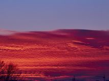 Sunset with red stratus clouds and blue sky. With flying white plane stock images