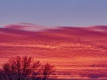 Sunset with red stratus clouds and blue sky. With flying white plane royalty free stock photography
