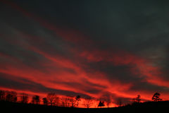 Sunset Red Streaks. Sunset streaks with tree line, silhouette Stock Photo