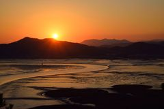 Sunset of Reeds field in Suncheon Bay Stock Images