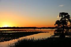 Sunset on Reelfoot Lake royalty free stock image