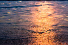 Sunset Reflected in Foam on Beach Stock Image