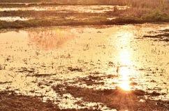 Sunset reflected Stock Photos