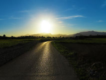 Sunset reflecting on lonesome country road Royalty Free Stock Image