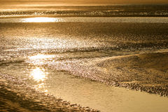 Sunset reflecting on sand beach Royalty Free Stock Photo