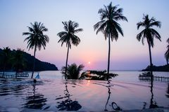Sunset reflecting on the water surface foreground with coconut trees area ao bang bao at Koh kood island is a district of Trat. Province. Thailand stock images