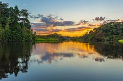 Free Sunset Reflection In The Amazon Rainforest Stock Photo - 142091050