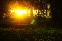 Sunset with reflection of radiant and lens flare in city park. royalty free stock photography