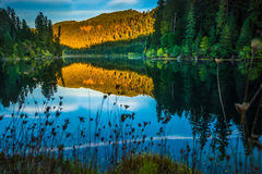 Sunset Reflection Toketee Lake Umpqua River Oregon Royalty Free Stock Photography