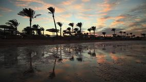 Sunset reflection in the water on the beach. Egypt. Sunset reflection in the water on the beach stock video