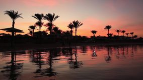 Sunset reflection in the water on the beach. Egypt. Sunset reflection in the water on the beach stock footage