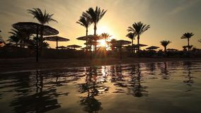 Sunset reflection in the water on the beach. Egypt. Sunset on the sandy beach. Red Sea, Egypt stock footage