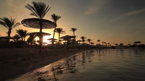 Sunset reflection in the water on the beach. Egypt. Sunset on the sandy beach. Red Sea, Egypt stock video
