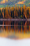 Sunset reflections on boreal forest lake in Yukon Stock Photos