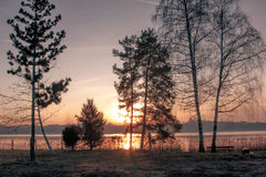 Sunset reflects  on lake as seen from shore behind trees Stock Photography